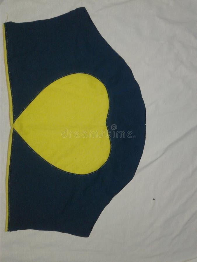 Indiskt klipp för muff för skjorta för damblusmuff royaltyfri foto