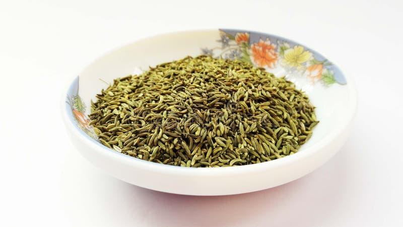indiskt kryddafänkålfrö på vit bakgrund arkivfoton