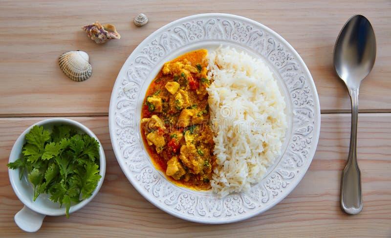 Indiskt recept för feg currymaträtt arkivbilder