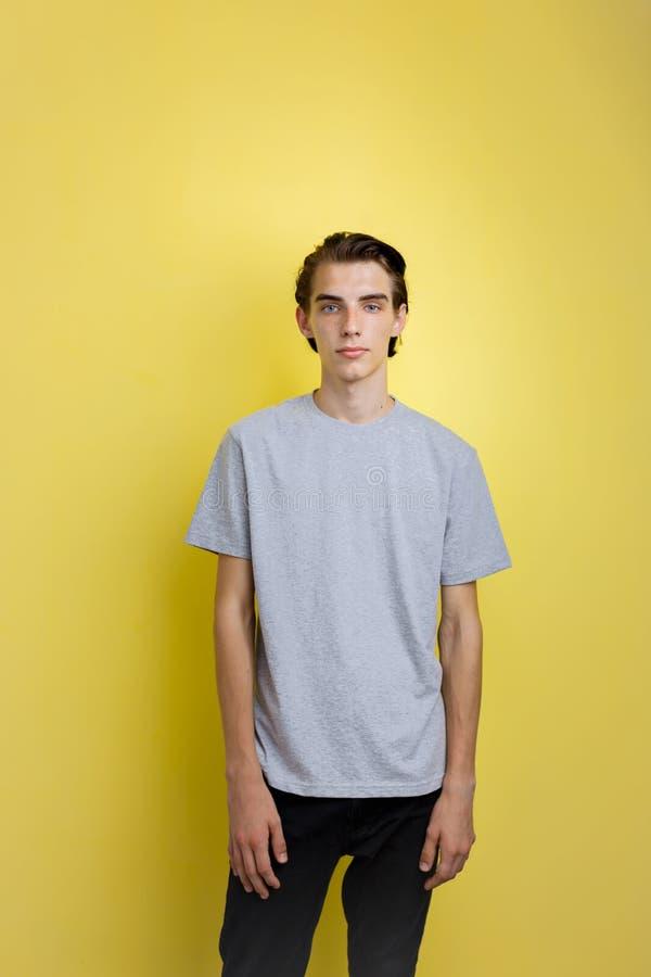 Indivíduo de cabelo escuro fino novo considerável calmo com os olhos azuis que vestem a posição cinzenta do t-shirt contra o fund imagens de stock