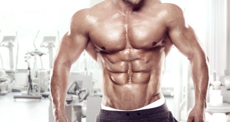 Indivíduo muscular do halterofilista que está no gym fotos de stock