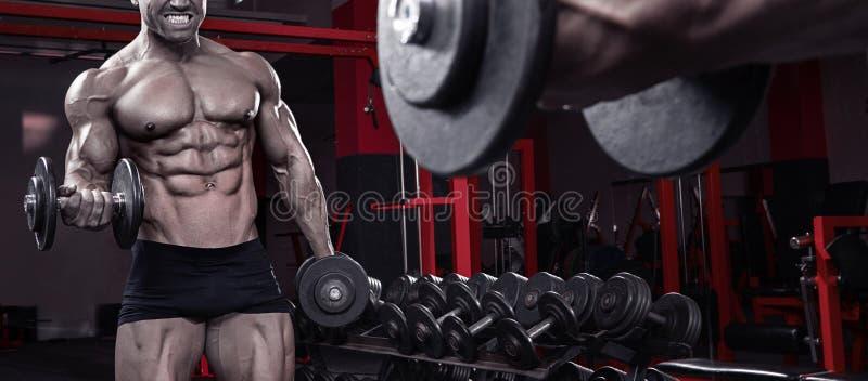 Indivíduo muscular do halterofilista que faz exercícios com peso imagem de stock