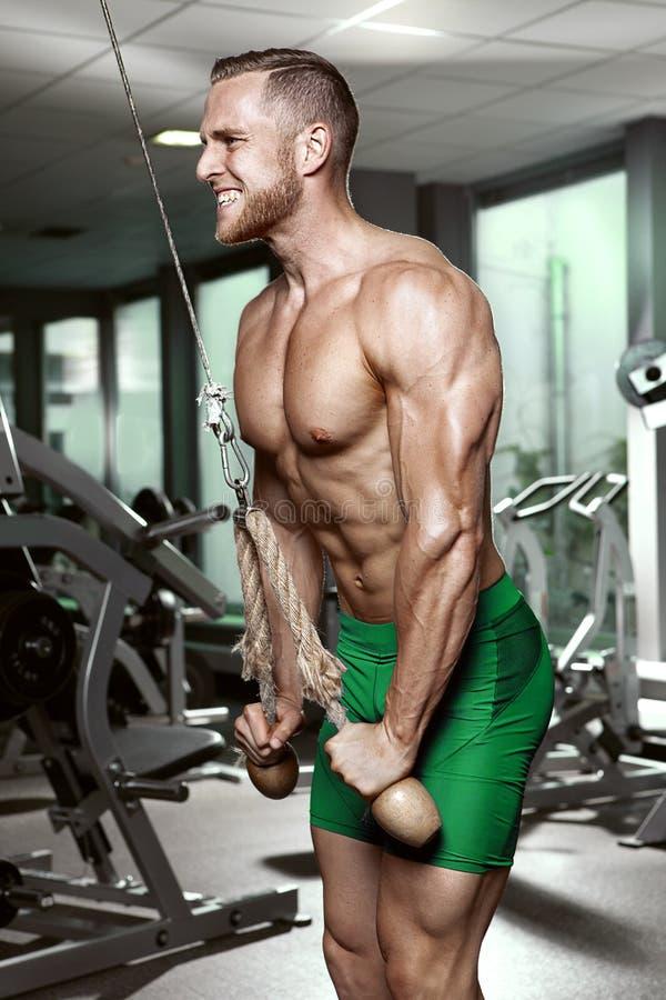 Indivíduo muscular do halterofilista que faz exercícios do tríceps imagens de stock royalty free