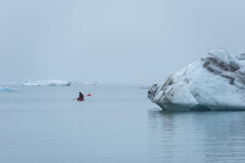 Indivíduo que kayaking entre iceberg de flutuação em Jokulsarlon, Islândia foto de stock