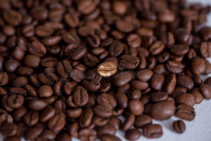 Individualidad, colocándose hacia fuera de un concepto de la muchedumbre, cierre para arriba de un solo brillante, grano de café  foto de archivo libre de regalías
