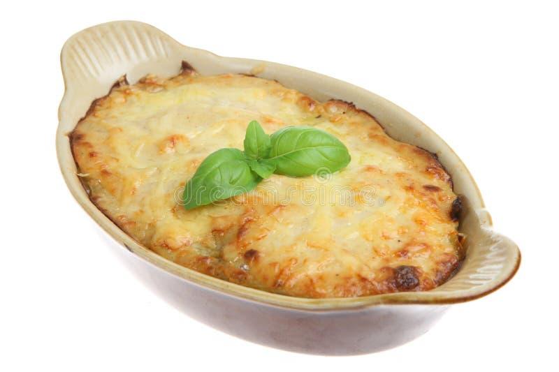 individuell lasagna arkivbild
