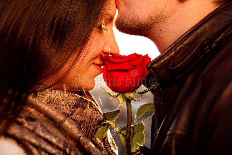 Individuo amoroso que besa suavemente a su muchacha con la rosa del rojo imagenes de archivo