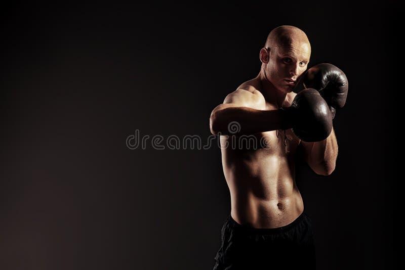 Individuo del boxeo fotografía de archivo libre de regalías
