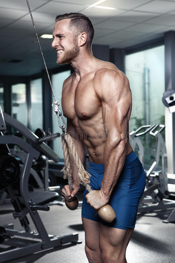 Individuo muscular del culturista que hace ejercicios del tríceps fotos de archivo