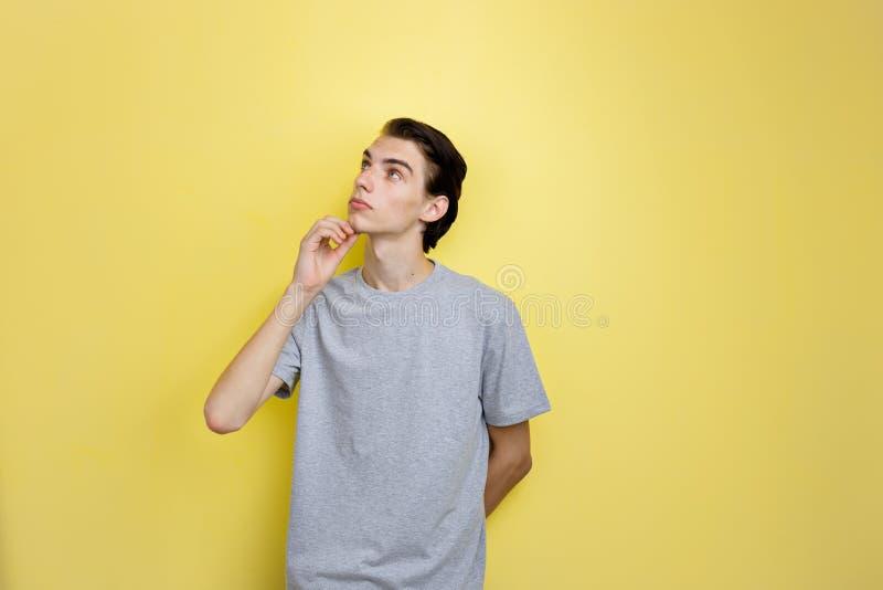 Individuo oscuro-cabelludo fino joven hermoso tranquilo con los ojos azules que llevan la mano gris de la tenencia de la camiseta fotografía de archivo libre de regalías