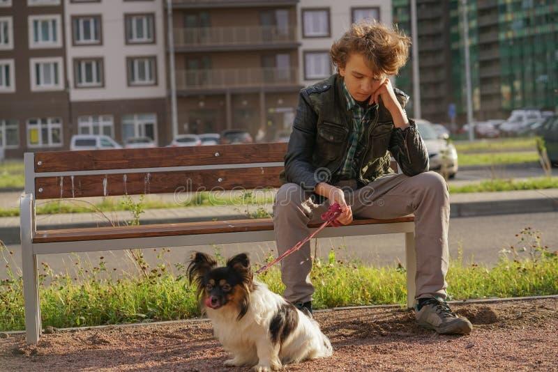 Individuo solo triste que se sienta en un banco con su perro las dificultades de la adolescencia en concepto de la comunicaci?n fotografía de archivo