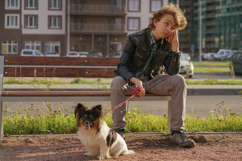 Individuo solo triste que se sienta en un banco con su perro las dificultades de la adolescencia en concepto de la comunicaci?n fotos de archivo