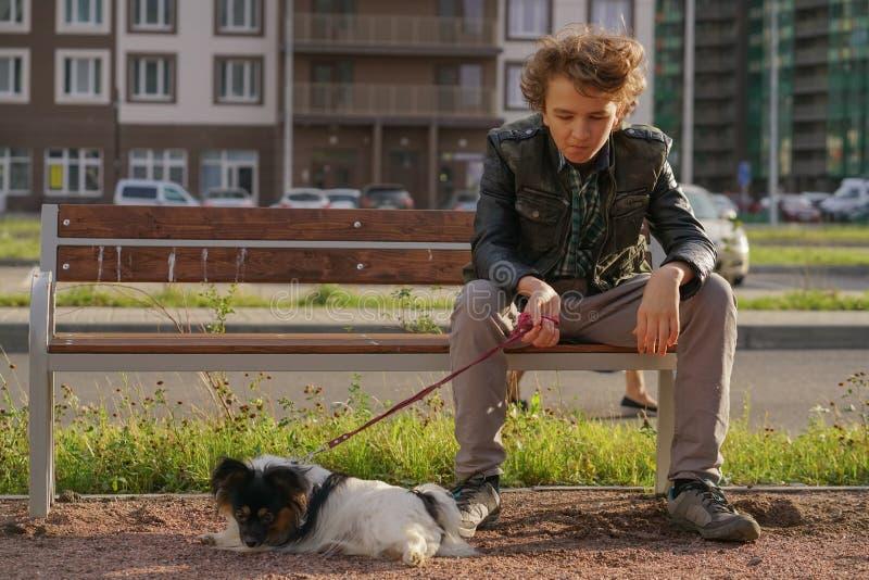 Individuo solo triste que se sienta en un banco con su perro las dificultades de la adolescencia en concepto de la comunicaci?n fotos de archivo libres de regalías