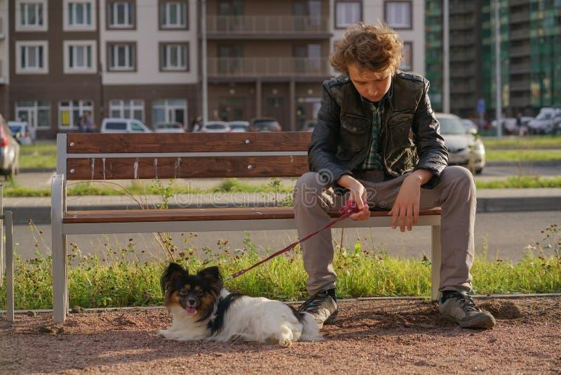 Individuo solo triste que se sienta en un banco con su perro las dificultades de la adolescencia en concepto de la comunicaci?n foto de archivo libre de regalías