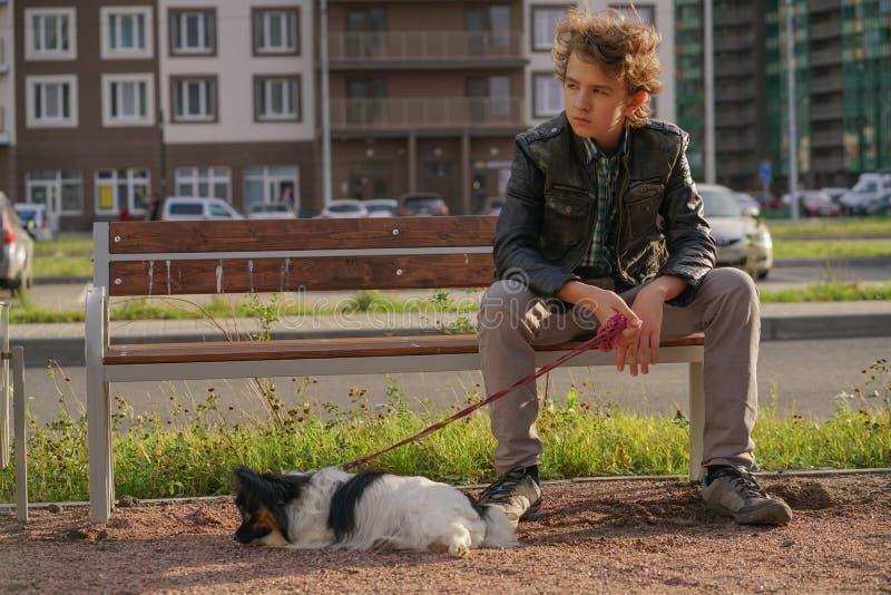 Individuo solo triste que se sienta en un banco con su perro las dificultades de la adolescencia en concepto de la comunicaci?n imagen de archivo libre de regalías