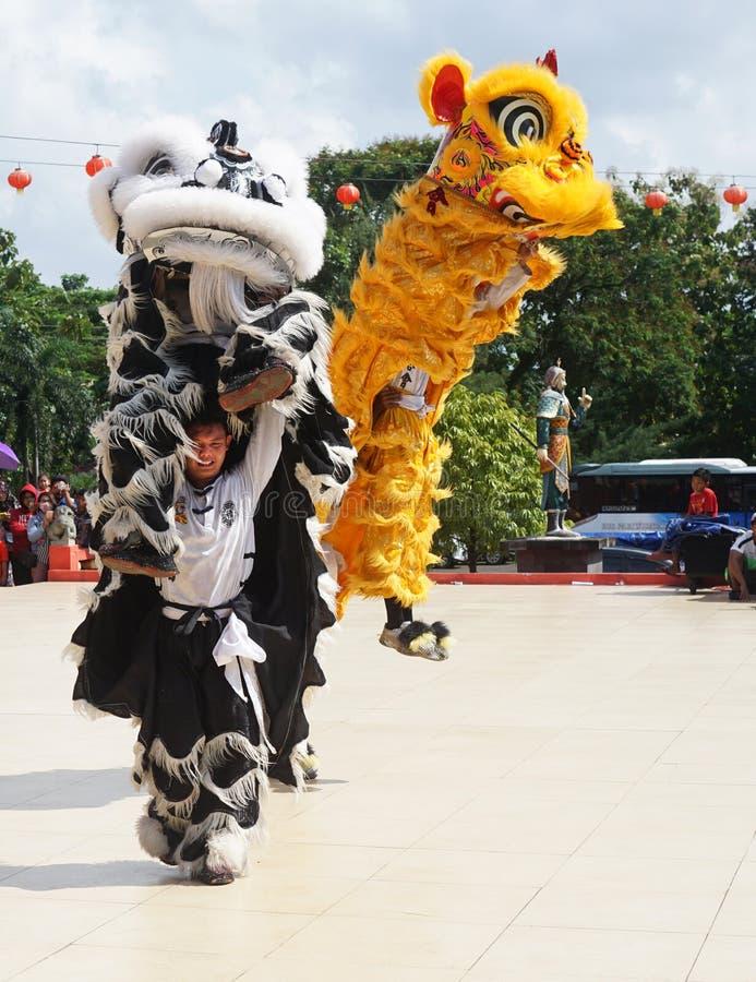 indonésia O desempenho de Dragon Dance durante a celebração chinesa do ano novo imagem de stock royalty free