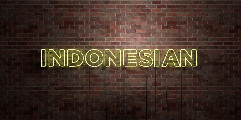 INDONES - fluorescerande tecken för neonrör på murverk - främre sikt - 3D framförd fri materielbild för royalty stock illustrationer