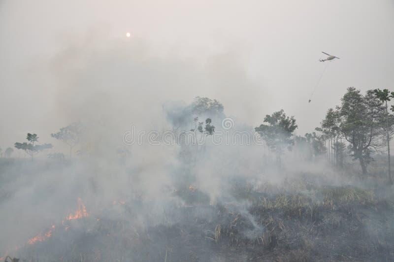 Indonesië hize stock fotografie