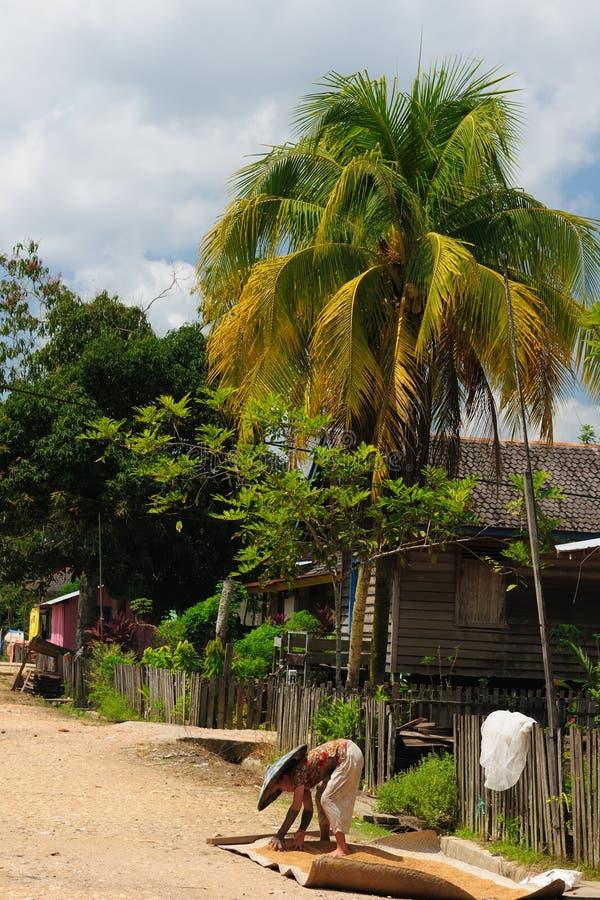Indonesië - landelijk landschap stock afbeelding