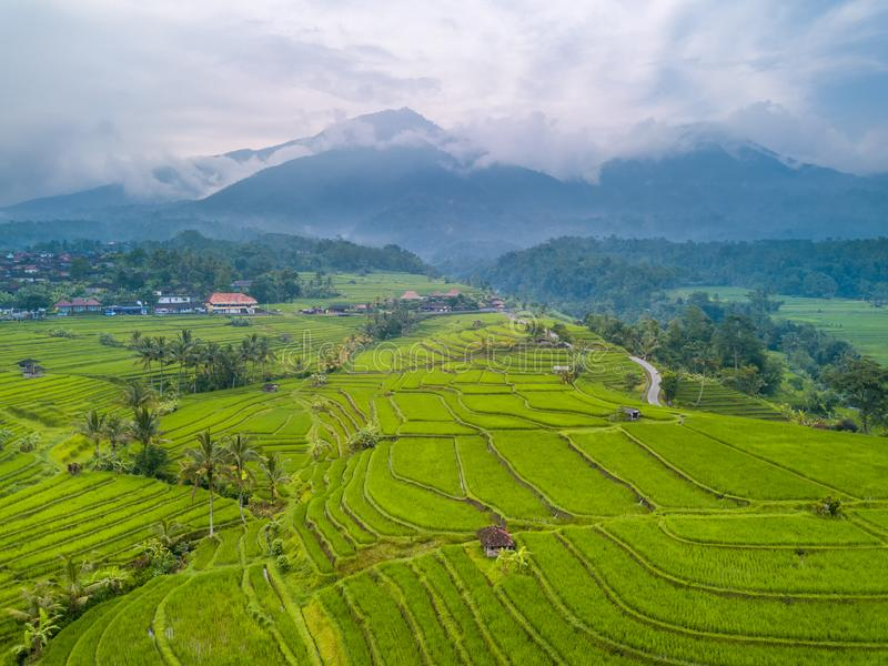 Terraces of Rice Fields and Mountains in the Clouds. Aerial View royalty free stock images