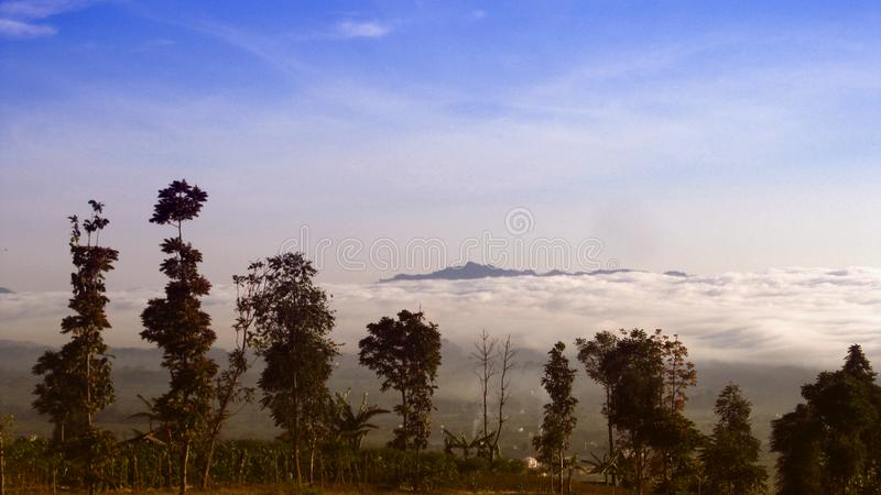 View on the Nature  at Temanggung Central Java Indonesia. Indonesian Farm field and forest with background ocean clouds at Temanggung, Central Java. Indonesia royalty free stock images