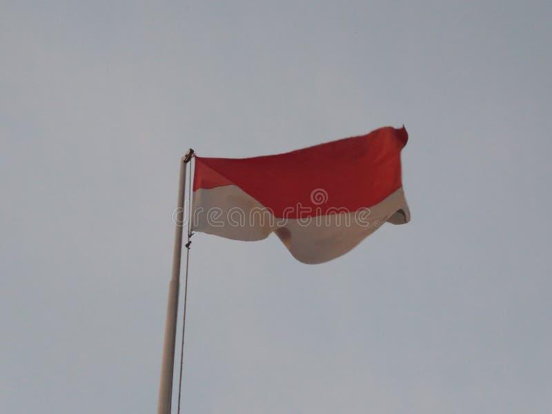 Indonesian Flag royalty free stock image