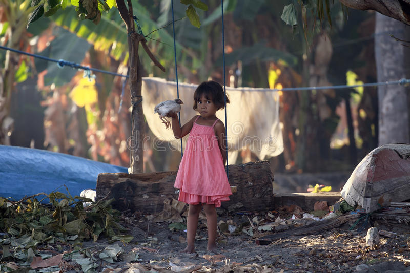 Indonesian girl with little chicken. royalty free stock photography