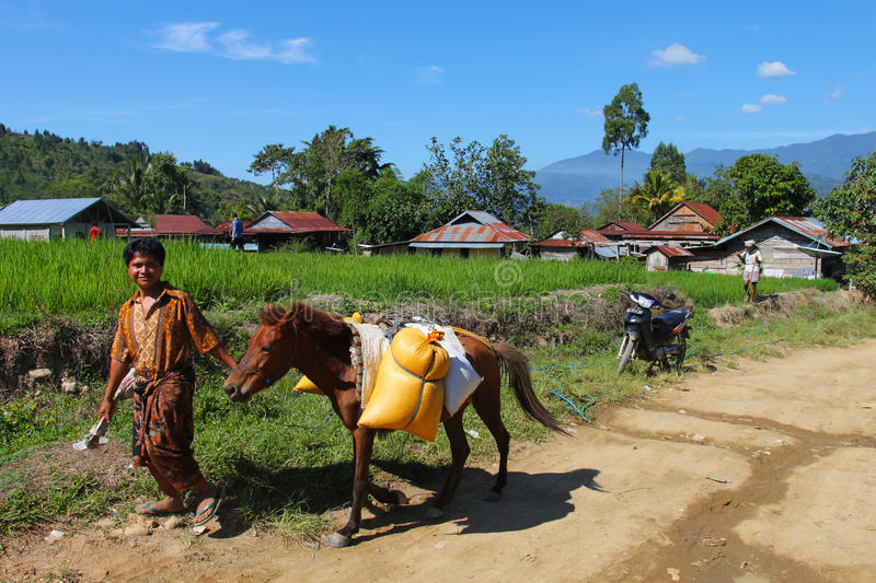 Download Indonesian village editorial image. Image of crop, countryside - 21591255