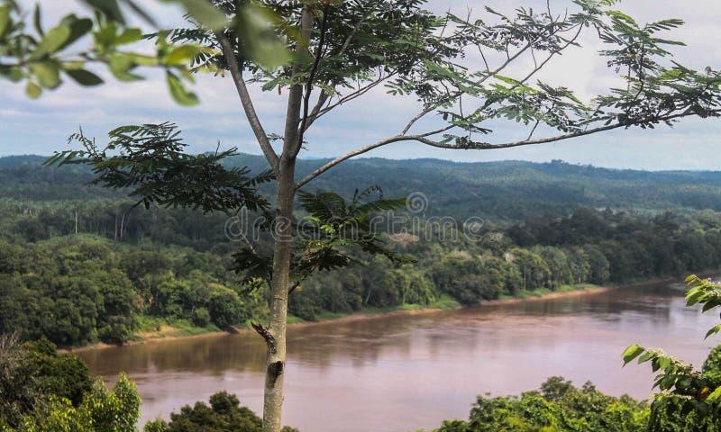 Indonesien-Fluss lizenzfreies stockbild