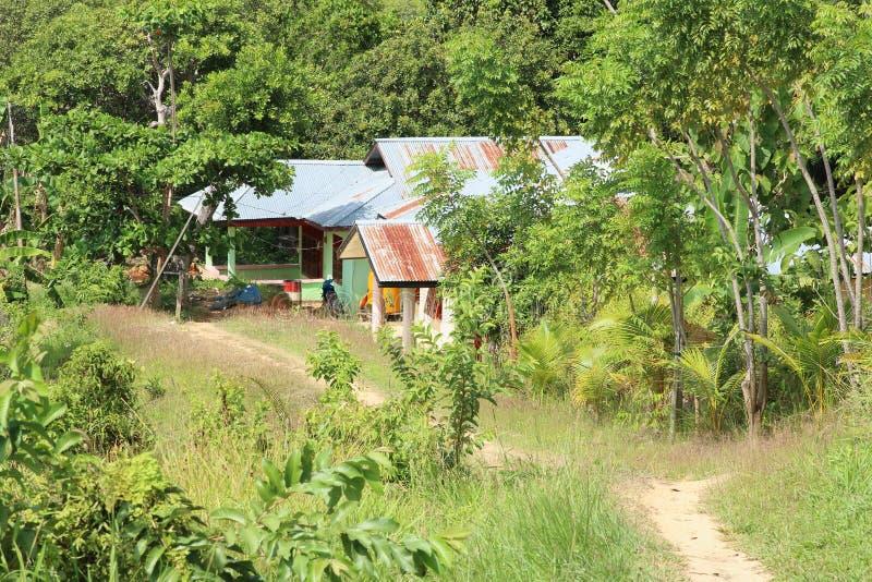Indonesisch huis in bos stock afbeelding