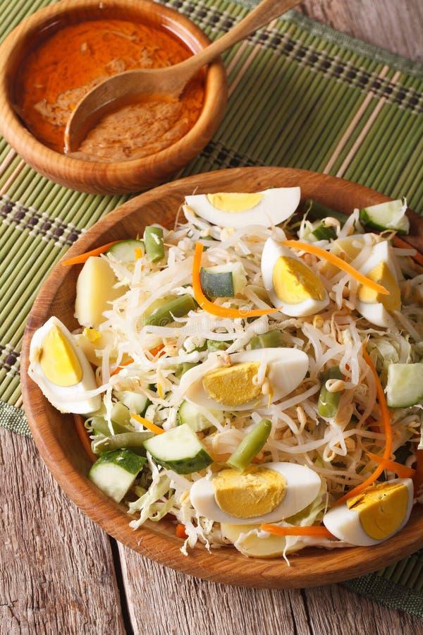 Indonesisch plantaardig de saladeclose-up van Gadogado verticaal royalty-vrije stock foto
