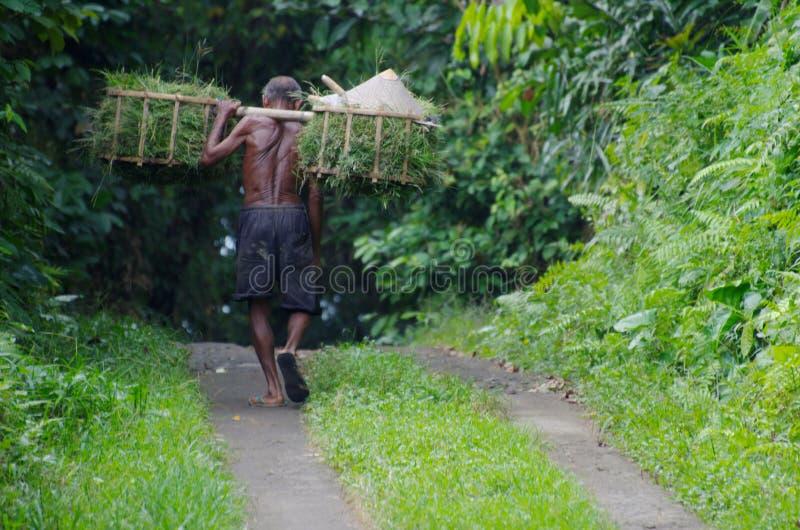 Indonesische oude arbeider stock foto's