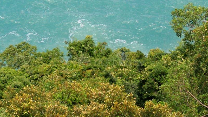 Indonezja: Widok morze i drzewa w Aceh obraz royalty free
