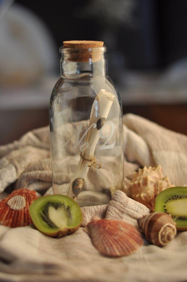 Indoor decoration bottle, kiwi and shells stock image