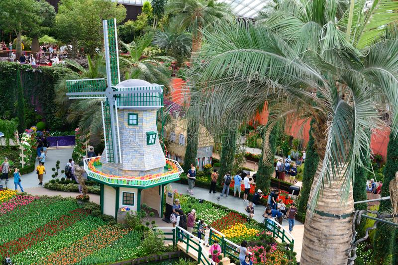 People strolling at Dutch garden exhibition with flowerbeds with colorful flowering tulips and windmill in Singapore Flower Dome. stock photo