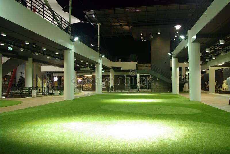 Indoor green grass stock image