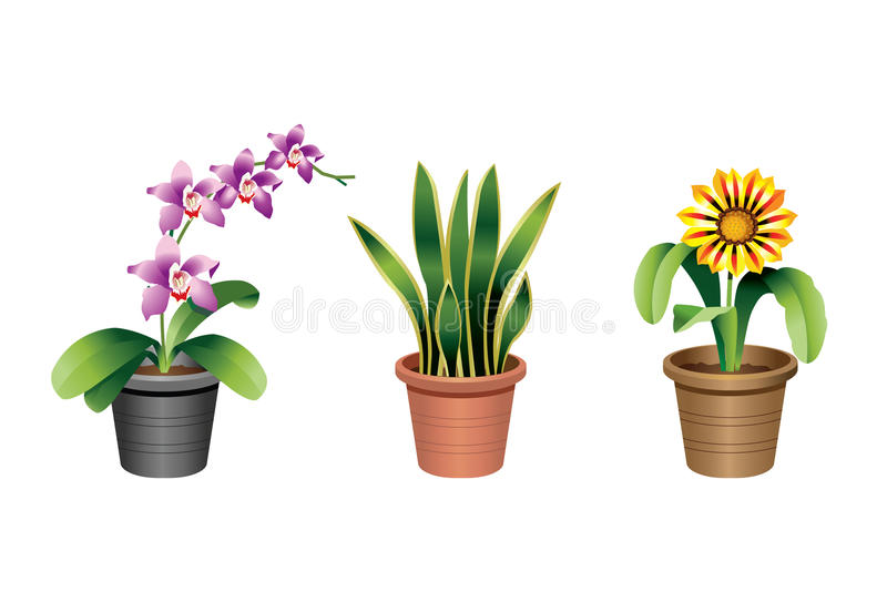 Indoor home and office plants stock illustration