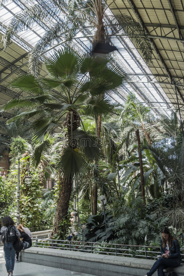 Indoor Palacio de Cristal, Madrid stock photography