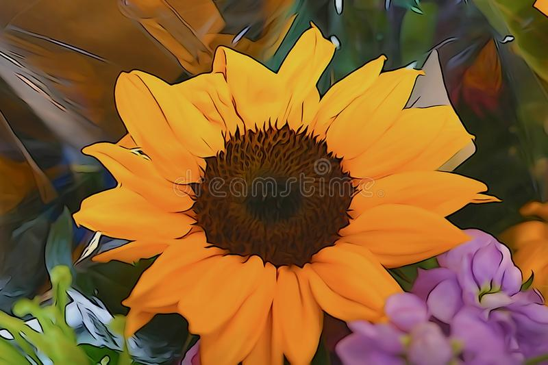Indoor sunflowers blooming in the summer royalty free stock photography