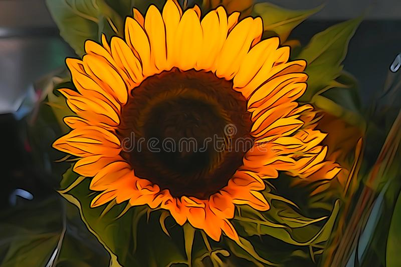 Indoor sunflowers blooming in the summer stock illustration