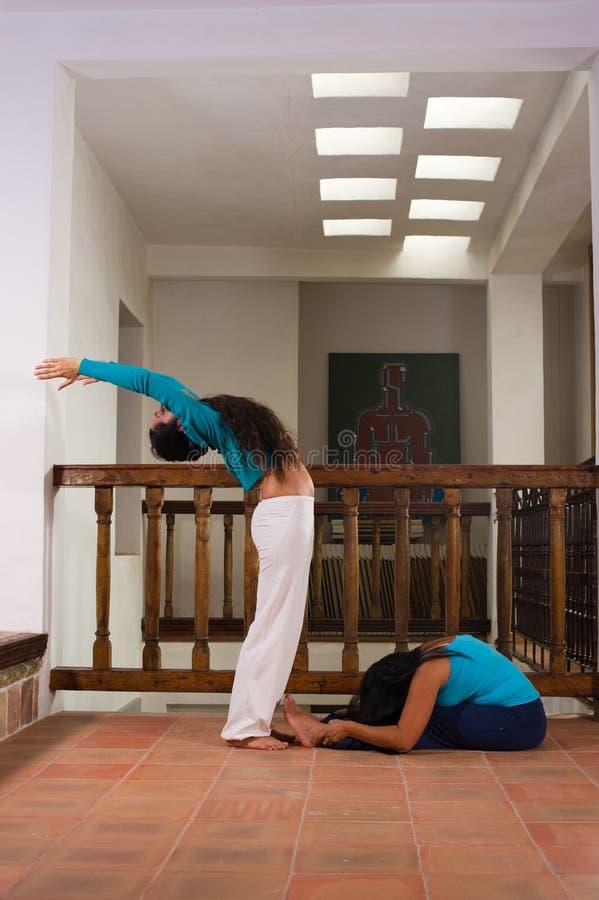 Download Indoors yoga stock photo. Image of brunette, vertical - 19144442