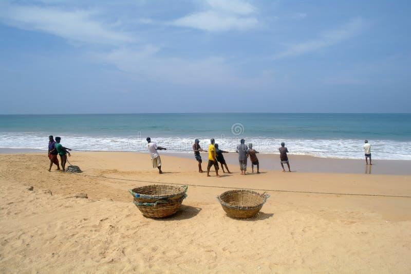INDURUWA, ΣΡΙ ΛΑΝΚΑ - 26 ΑΠΡΙΛΊΟΥ 2013: Οι ψαράδες Lankan Sri τραβούν μεγάλο καθαρό σε Induruwa, Σρι Λάνκα Η αλιεία είναι ένα βασ στοκ φωτογραφίες με δικαίωμα ελεύθερης χρήσης