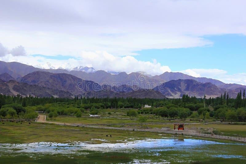Indus basen przy Ladakh, Jammu i Kaszmir stanem India, obraz royalty free