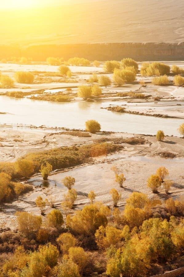 indus flod arkivbild