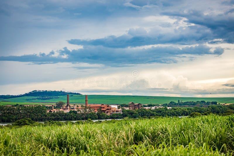 Industria della fabbrica della canna da zucchero - Sao Paulo, Brasile fotografie stock libere da diritti