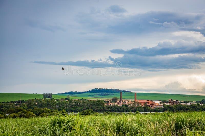 Industria della fabbrica della canna da zucchero - Sao Paulo, Brasile immagini stock