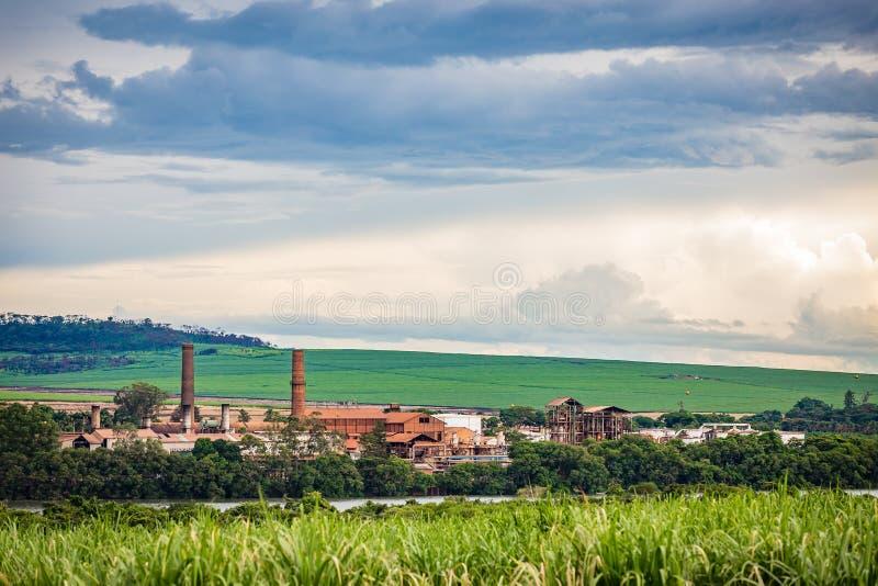 Industria della fabbrica della canna da zucchero - Sao Paulo, Brasile immagine stock libera da diritti