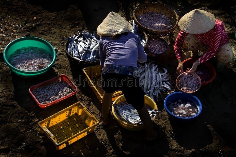 Industria della pesca di Nha Trang fotografie stock libere da diritti