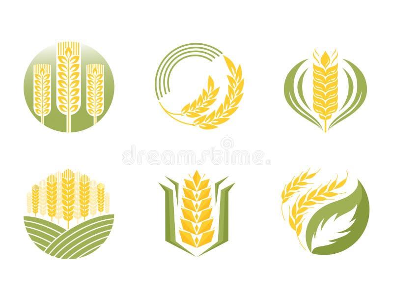 Industria di agricoltura delle orecchie e dei grani del cereale o simbolo naturale organico dell'illustrazione dell'alimento di v royalty illustrazione gratis