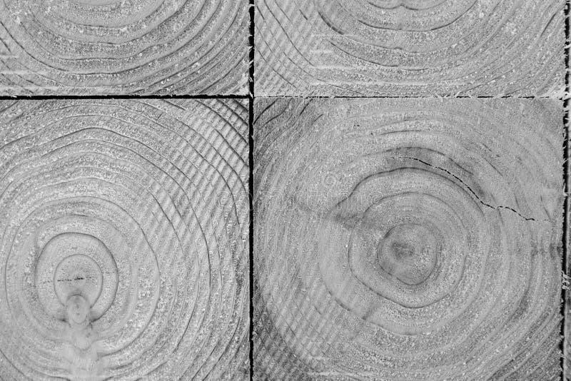 Industria di trasformazione del pino nel Giappone fotografie stock libere da diritti